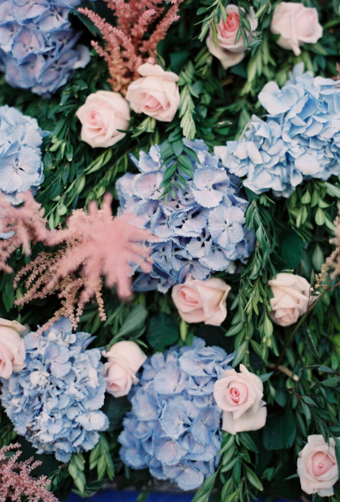 blue hydrangea and pink rose flower wall